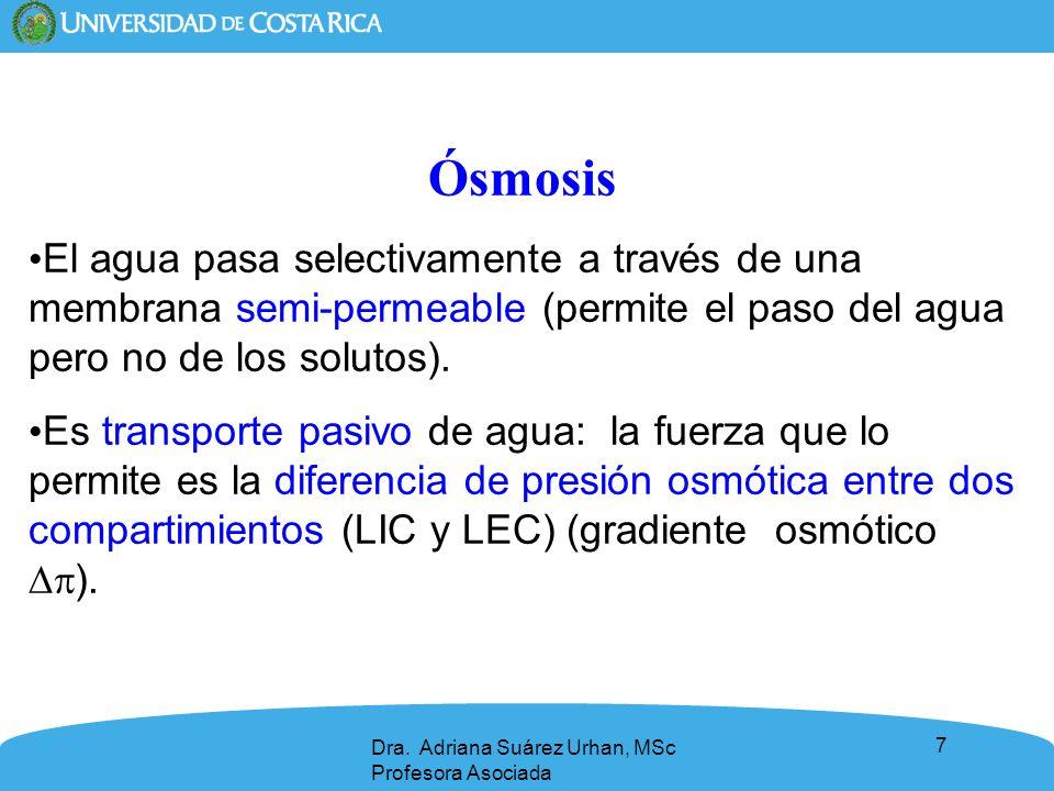 7 Ósmosis El agua pasa selectivamente a través de una membrana semi-permeable (permite el paso del agua pero no de los solutos). Es transporte pasivo