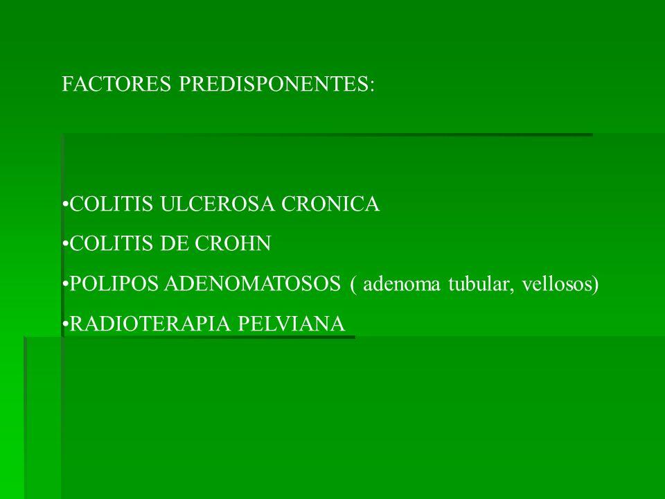 FACTORES PREDISPONENTES: COLITIS ULCEROSA CRONICA COLITIS DE CROHN POLIPOS ADENOMATOSOS ( adenoma tubular, vellosos) RADIOTERAPIA PELVIANA