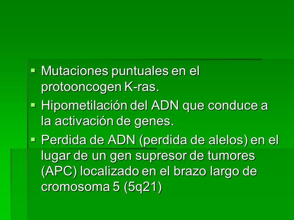 Perdida de alelos en el lugar del gen supresor de tumores localizado en el cr.
