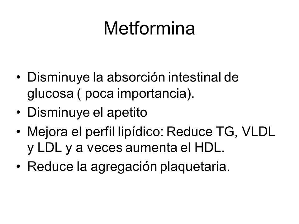Metformina Disminuye la absorción intestinal de glucosa ( poca importancia). Disminuye el apetito Mejora el perfil lipídico: Reduce TG, VLDL y LDL y a