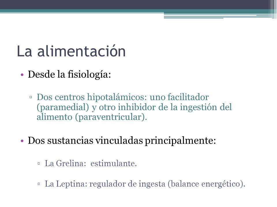 La alimentación Desde la fisiología: Dos centros hipotalámicos: uno facilitador (paramedial) y otro inhibidor de la ingestión del alimento (paraventri