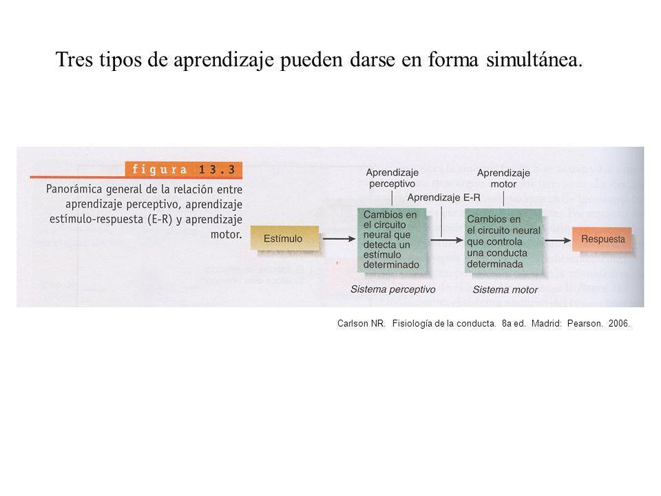 Tres tipos de aprendizaje pueden darse en forma simultánea. Carlson NR. Fisiología de la conducta. 8a ed. Madrid: Pearson. 2006.