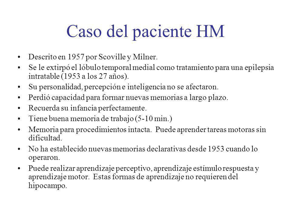 Caso del paciente HM Descrito en 1957 por Scoville y Milner. Se le extirpó el lóbulo temporal medial como tratamiento para una epilepsia intratable (1