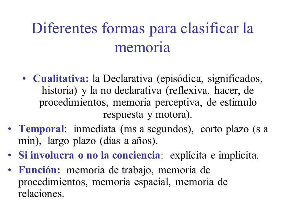 Diferentes formas para clasificar la memoria Cualitativa: la Declarativa (episódica, significados, historia) y la no declarativa (reflexiva, hacer, de