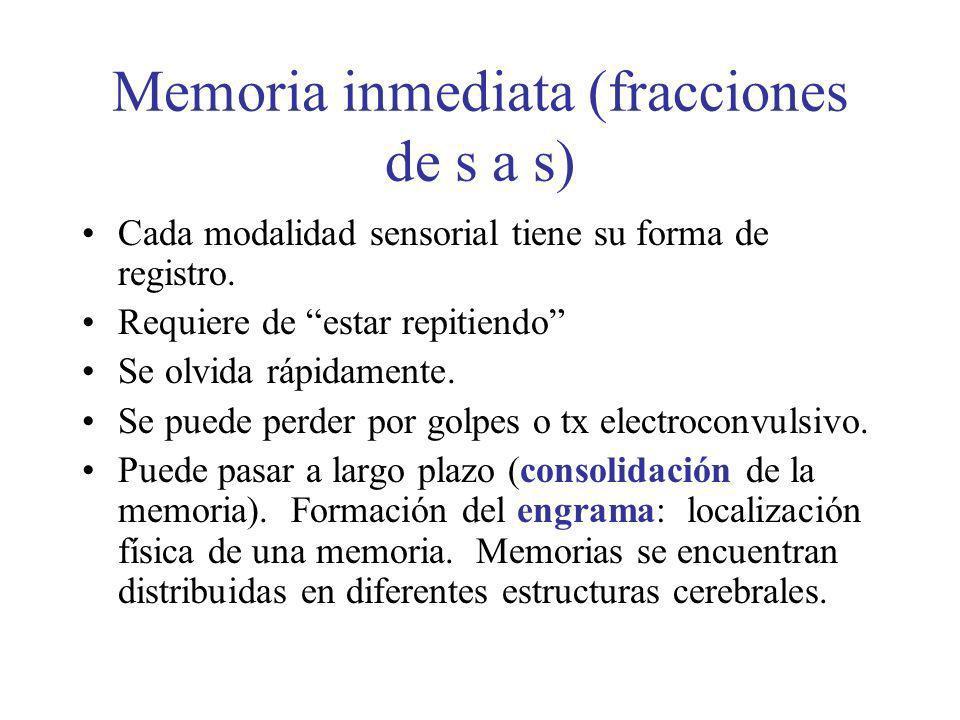 Memoria inmediata (fracciones de s a s) Cada modalidad sensorial tiene su forma de registro. Requiere de estar repitiendo Se olvida rápidamente. Se pu