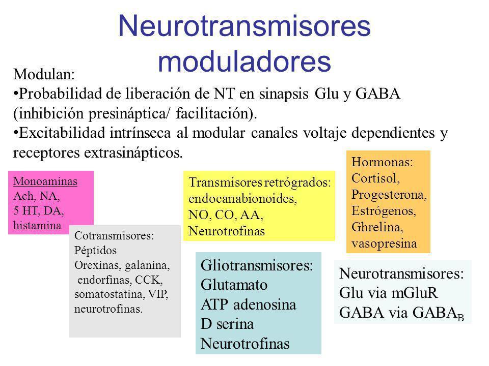 Neurotransmisores moduladores Modulan: Probabilidad de liberación de NT en sinapsis Glu y GABA (inhibición presináptica/ facilitación). Excitabilidad