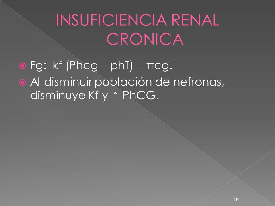 10 Fg: kf (Phcg – phT) – πcg. Al disminuir población de nefronas, disminuye Kf y PhCG.