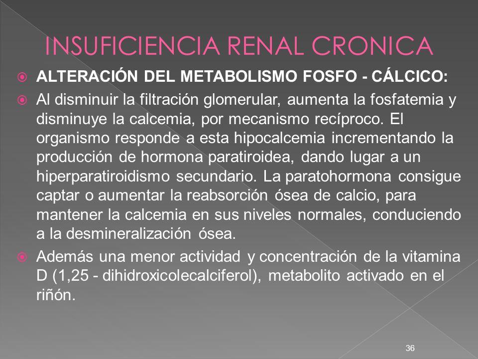 36 ALTERACIÓN DEL METABOLISMO FOSFO - CÁLCICO: Al disminuir la filtración glomerular, aumenta la fosfatemia y disminuye la calcemia, por mecanismo rec