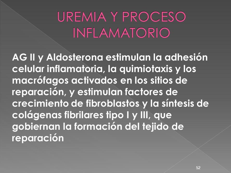 52 AG II y Aldosterona estimulan la adhesión celular inflamatoria, la quimiotaxis y los macrófagos activados en los sitios de reparación, y estimulan