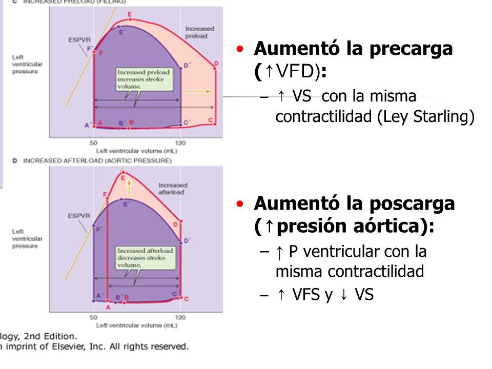Aumentó ( VFD) :Aumentó la precarga ( VFD) : – VS con la misma contractilidad ( – VS con la misma contractilidad (Ley Starling) Aumentó laAumentó la p