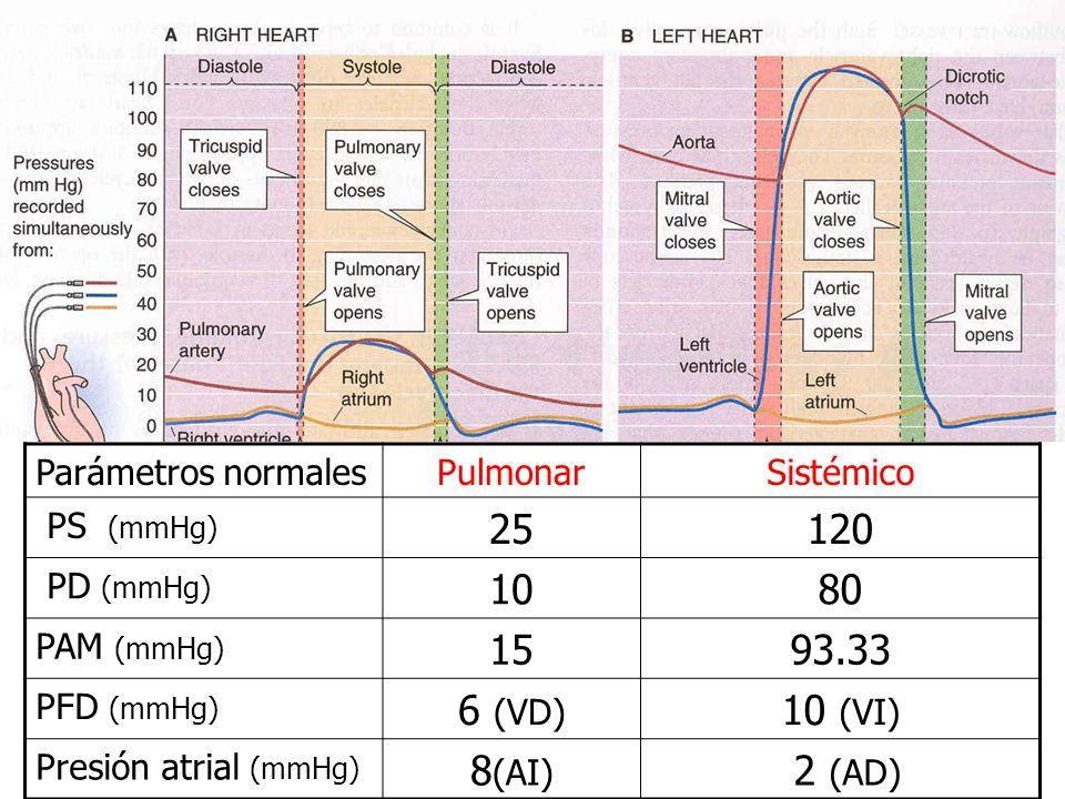 Parámetros normalesPulmonarSistémico PS (mmHg) 25120 PD (mmHg) 1080 PAM (mmHg) 1593.33 PFD (mmHg) 6 (VD) 10 (VI) Presión atrial (mmHg) 8 (AI) 2 (AD)