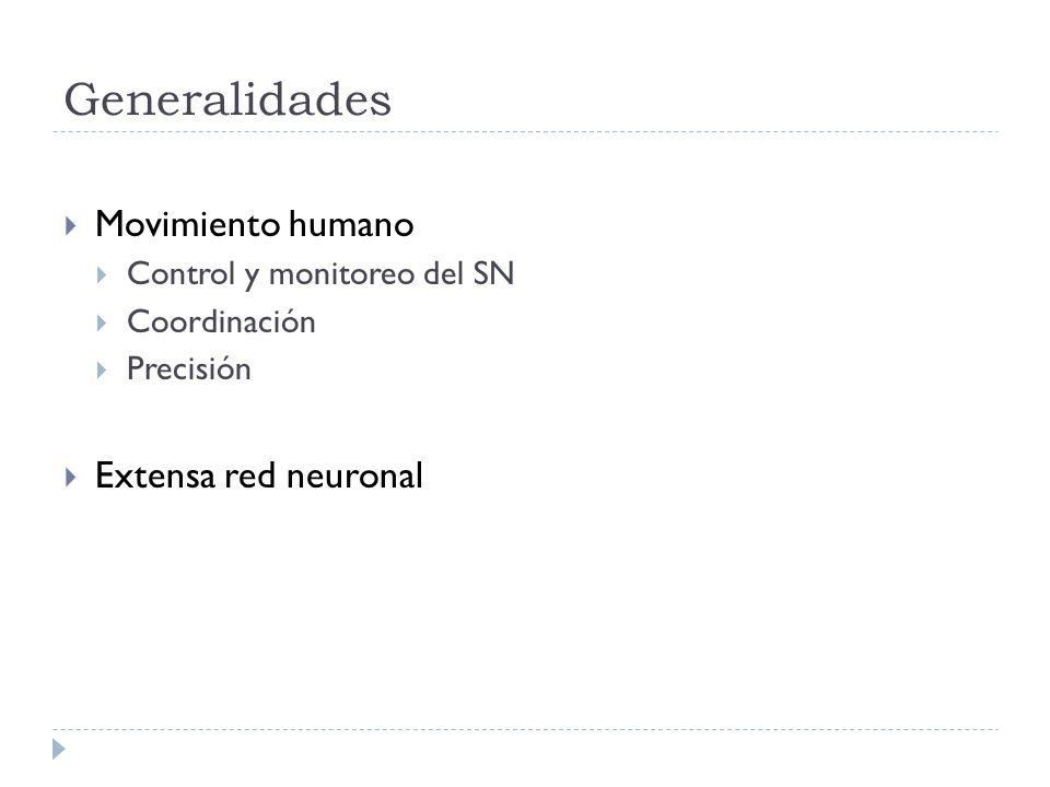 Generalidades Movimiento humano Control y monitoreo del SN Coordinación Precisión Extensa red neuronal