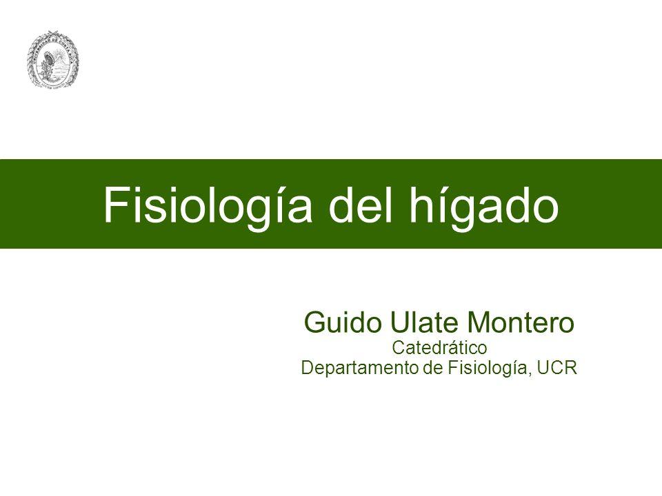 Fisiología del hígado Guido Ulate Montero Catedrático Departamento de Fisiología, UCR