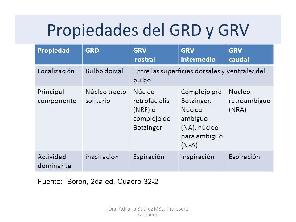 Propiedades del GRD y GRV PropiedadGRDGRV rostral GRV intermedio GRV caudal LocalizaciónBulbo dorsalEntre las superficies dorsales y ventrales del bul
