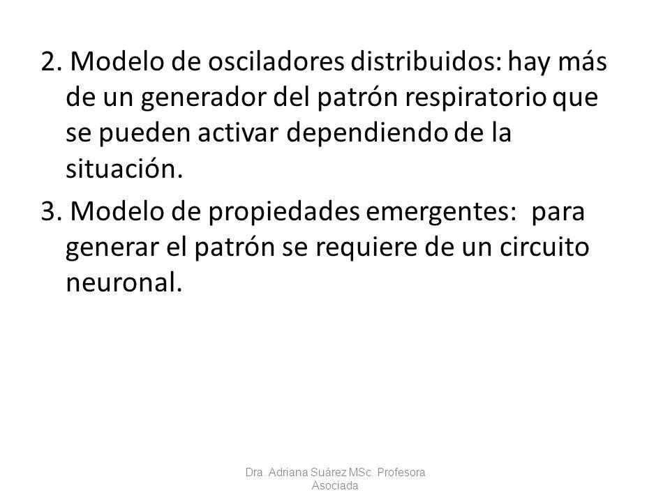 2. Modelo de osciladores distribuidos: hay más de un generador del patrón respiratorio que se pueden activar dependiendo de la situación. 3. Modelo de