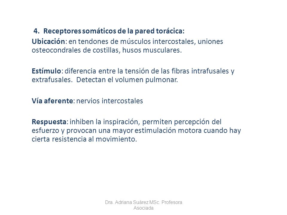 4. Receptores somáticos de la pared torácica: Ubicación: en tendones de músculos intercostales, uniones osteocondrales de costillas, husos musculares.