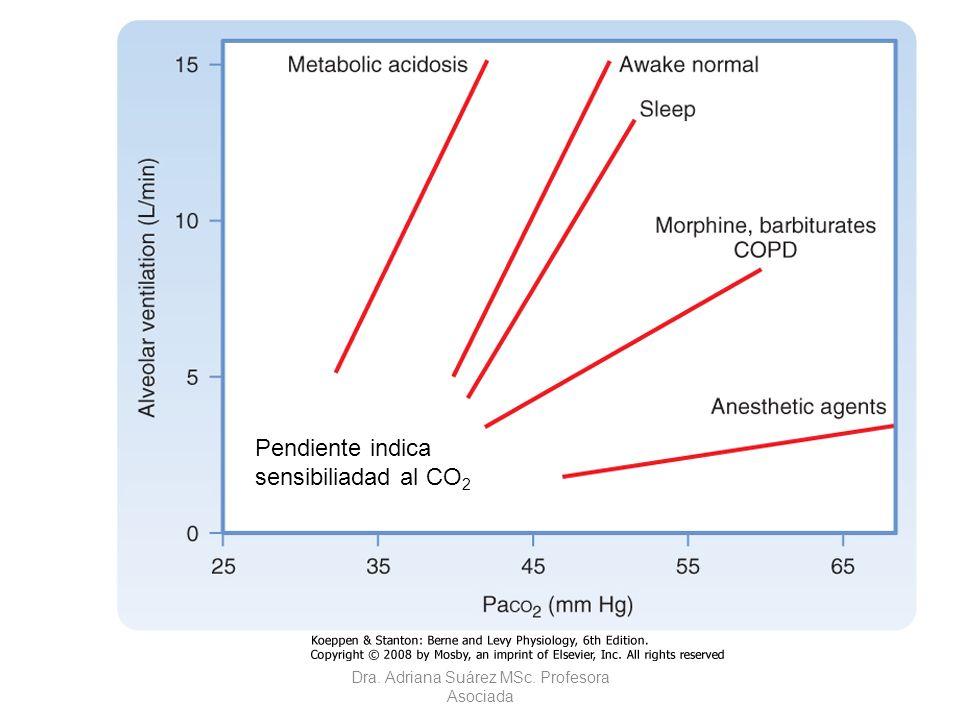 Curva de respuesta CO 2 -ventilación durante el sueño Pendiente indica sensibiliadad al CO 2 Dra. Adriana Suárez MSc. Profesora Asociada