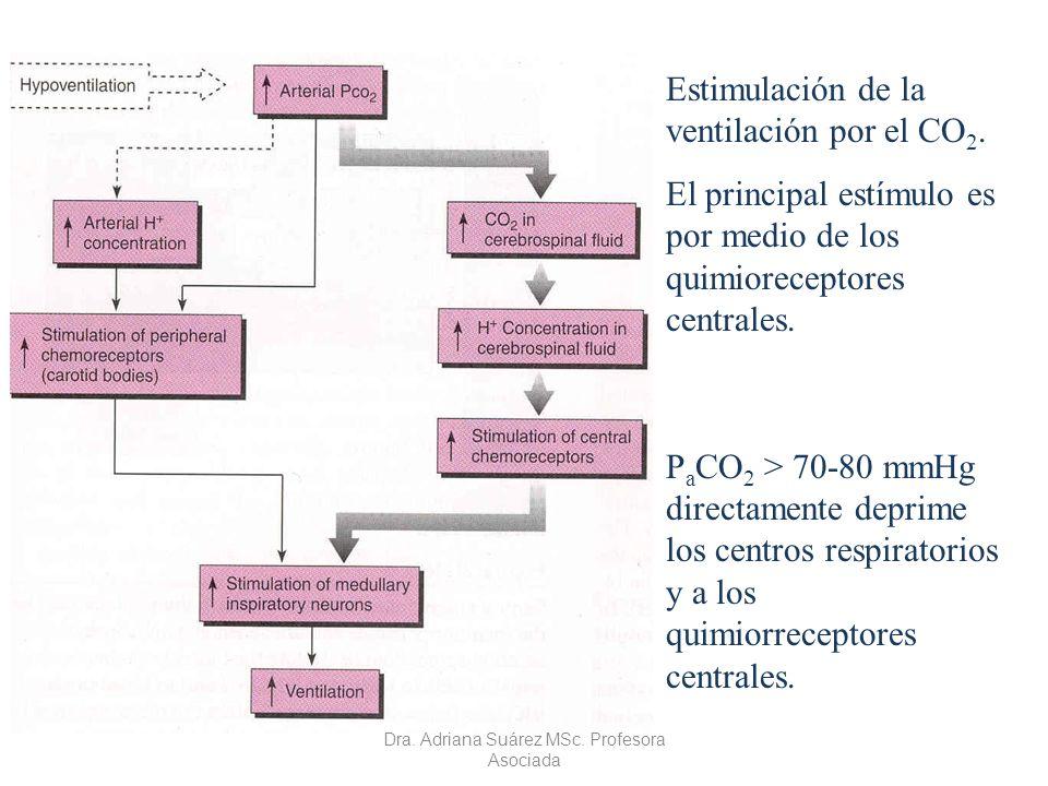 Estimulación de la ventilación por el CO 2. El principal estímulo es por medio de los quimioreceptores centrales. P a CO 2 > 70-80 mmHg directamente d