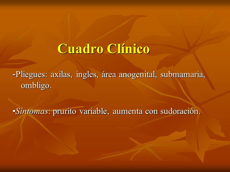 Cuadro Clínico - Pliegues: axilas, ingles, área anogenital, submamaria, ombligo. Síntomas: prurito variable, aumenta con sudoración.