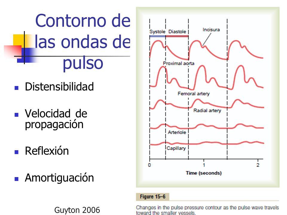 Contorno de las ondas de pulso Distensibilidad Velocidad de propagación Reflexión Amortiguación Guyton 2006