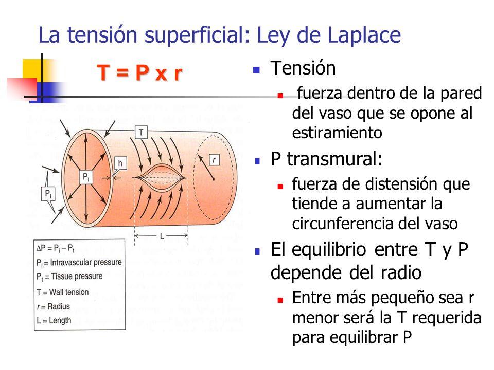 La tensión superficial: Ley de Laplace Tensión fuerza dentro de la pared del vaso que se opone al estiramiento P transmural: fuerza de distensión que