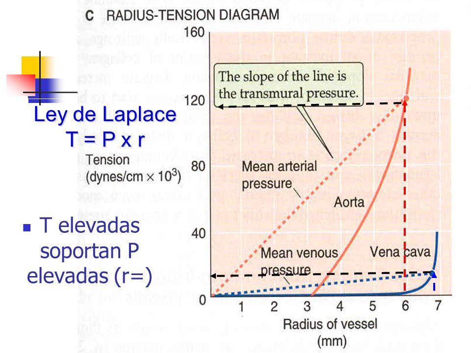 Ley de Laplace T = P x r T elevadas soportan P elevadas (r=)