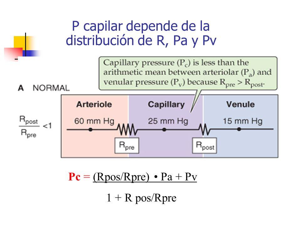 P capilar depende de la distribución de R, Pa y Pv Pc = (Rpos/Rpre) Pa + Pv 1 + R pos/Rpre