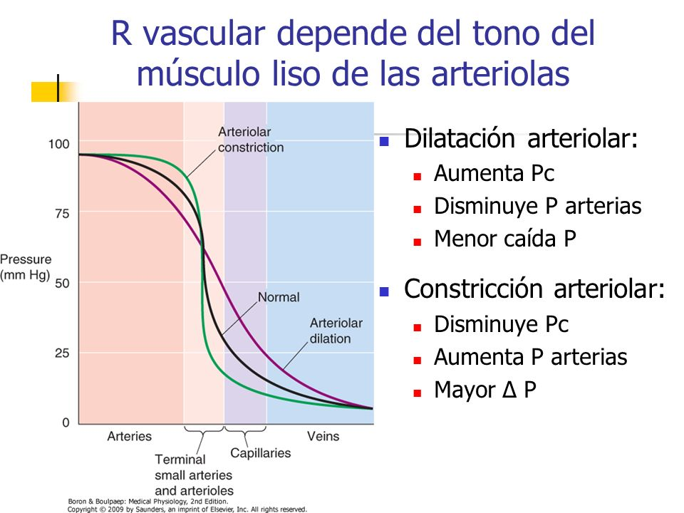 Dilatación arteriolar: Aumenta Pc Disminuye P arterias Menor caída P Constricción arteriolar: Disminuye Pc Aumenta P arterias Mayor Δ P R vascular dep