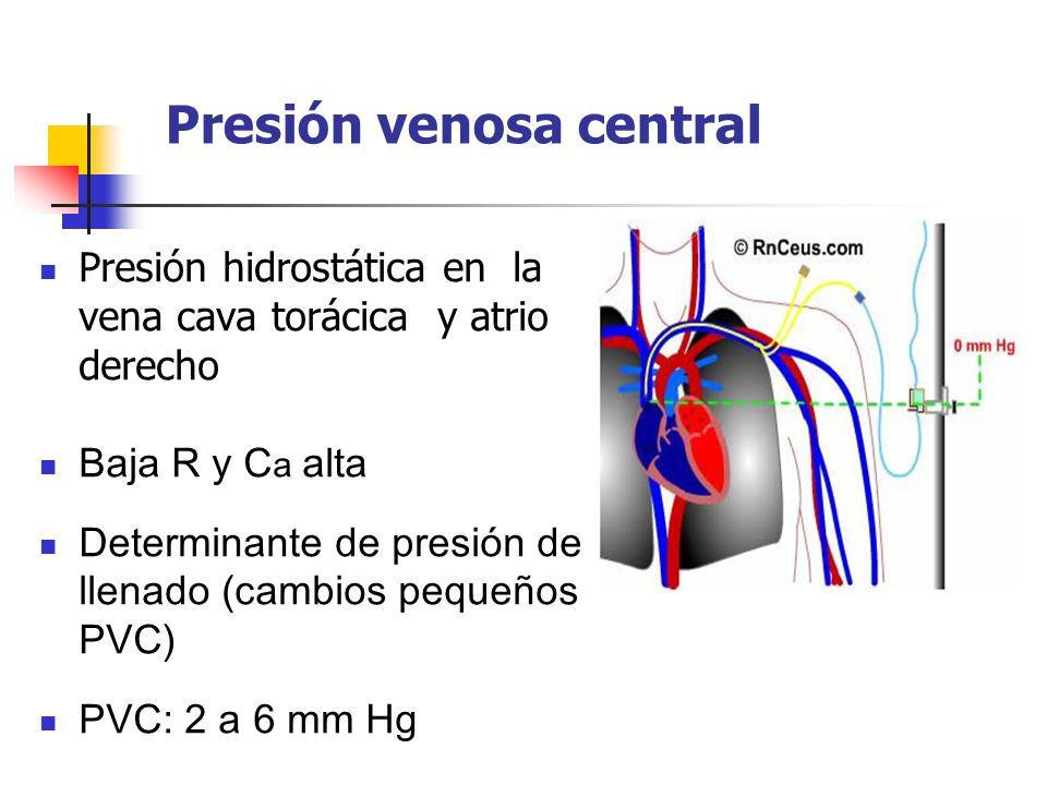 Presión venosa central Presión hidrostática en la vena cava torácica y atrio derecho Baja R y C a alta Determinante de presión de llenado (cambios peq