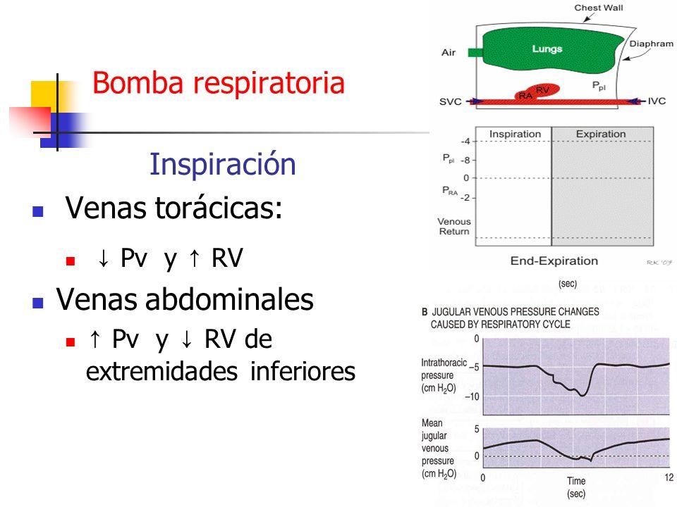 Bomba respiratoria Inspiración Venas torácicas: Pv y RV Venas abdominales Pv y RV de extremidades inferiores