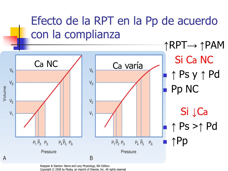 Efecto de la RPT en la Pp de acuerdo con la complianza C a NC RPT PAM Si C a NC Ps y Pd Pp NC C a varía Si C a Ps > Pd Pp