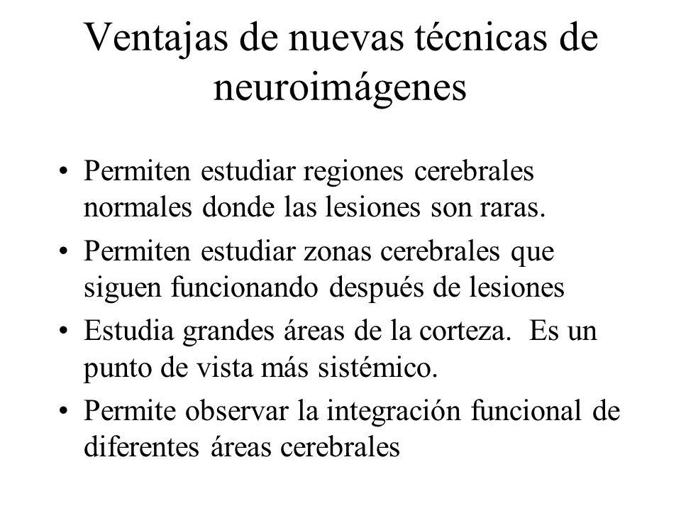 Ventajas de nuevas técnicas de neuroimágenes Permiten estudiar regiones cerebrales normales donde las lesiones son raras. Permiten estudiar zonas cere