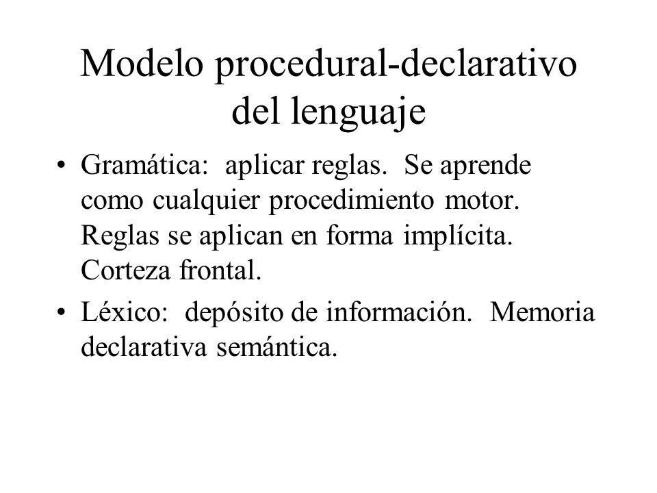 Modelo procedural-declarativo del lenguaje Gramática: aplicar reglas. Se aprende como cualquier procedimiento motor. Reglas se aplican en forma implíc
