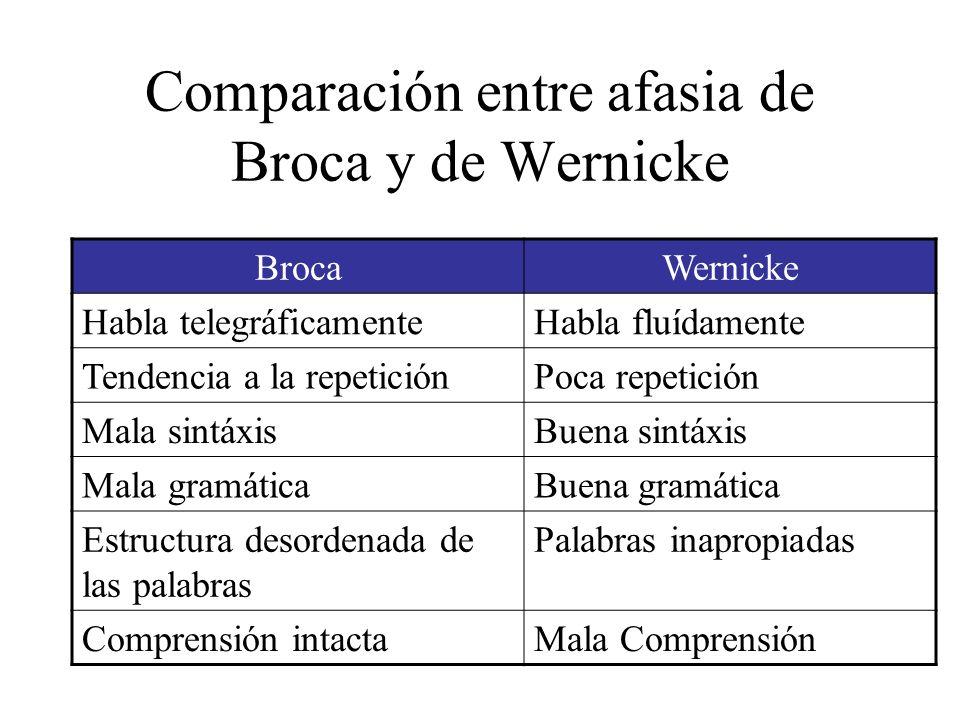 Comparación entre afasia de Broca y de Wernicke BrocaWernicke Habla telegráficamenteHabla fluídamente Tendencia a la repeticiónPoca repetición Mala si