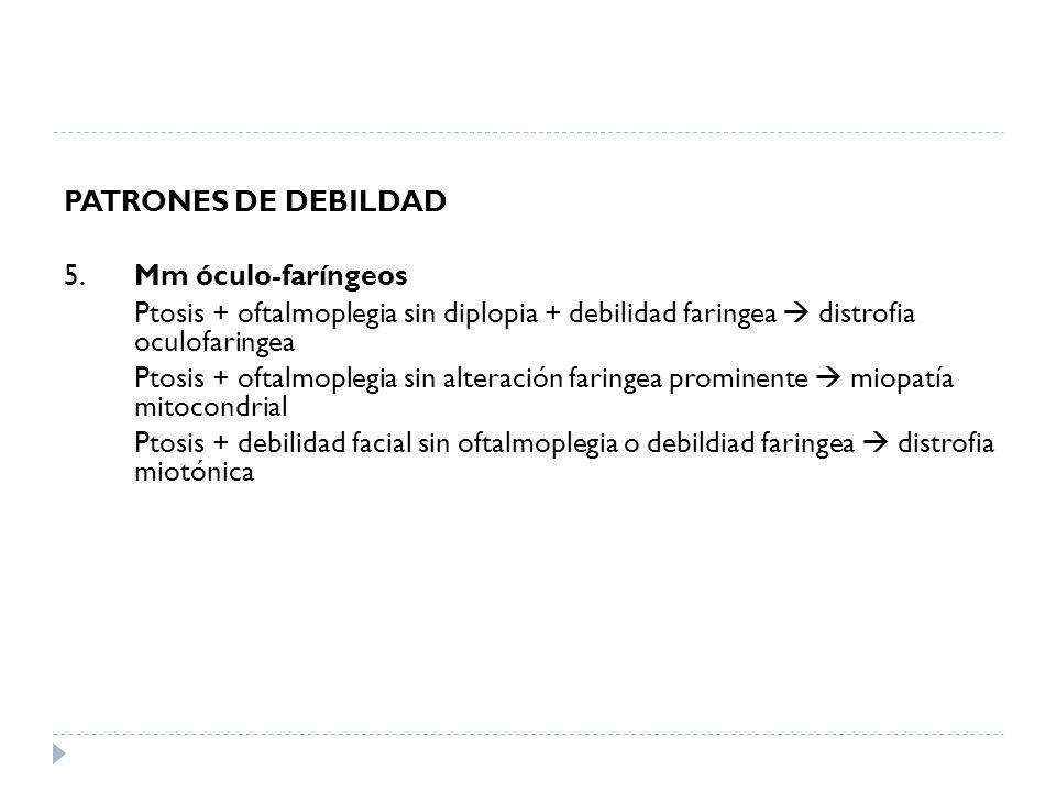 PATRONES DE DEBILDAD 5. Mm óculo-faríngeos Ptosis + oftalmoplegia sin diplopia + debilidad faringea distrofia oculofaringea Ptosis + oftalmoplegia sin