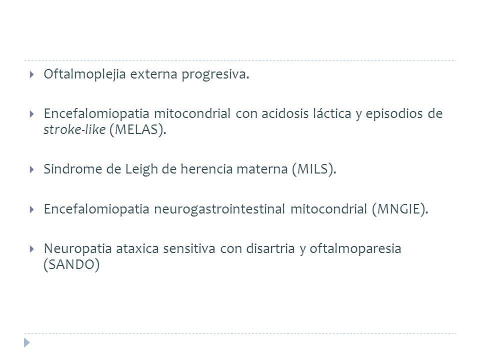 Oftalmoplejia externa progresiva. Encefalomiopatia mitocondrial con acidosis láctica y episodios de stroke-like (MELAS). Sindrome de Leigh de herencia