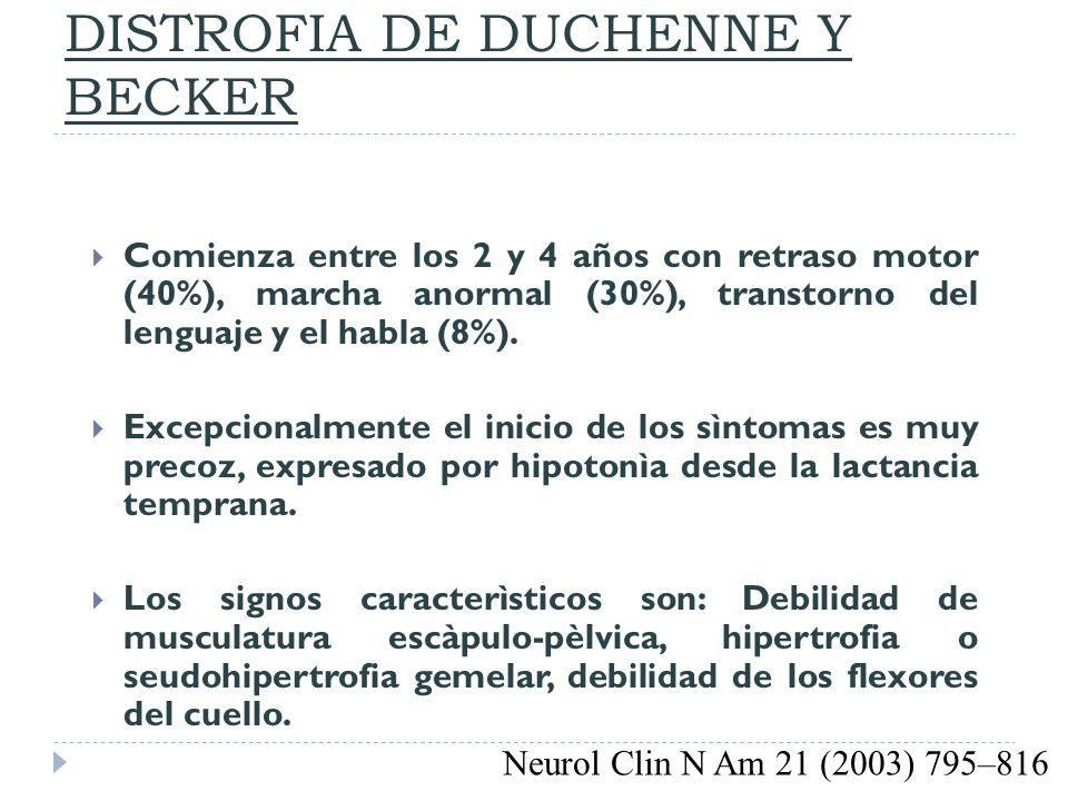 DISTROFIA DE DUCHENNE Y BECKER Comienza entre los 2 y 4 años con retraso motor (40%), marcha anormal (30%), transtorno del lenguaje y el habla (8%). E
