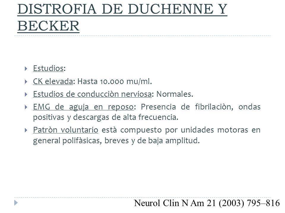 DISTROFIA DE DUCHENNE Y BECKER Estudios: CK elevada: Hasta 10.000 mu/ml. Estudios de conducciòn nerviosa: Normales. EMG de aguja en reposo: Presencia
