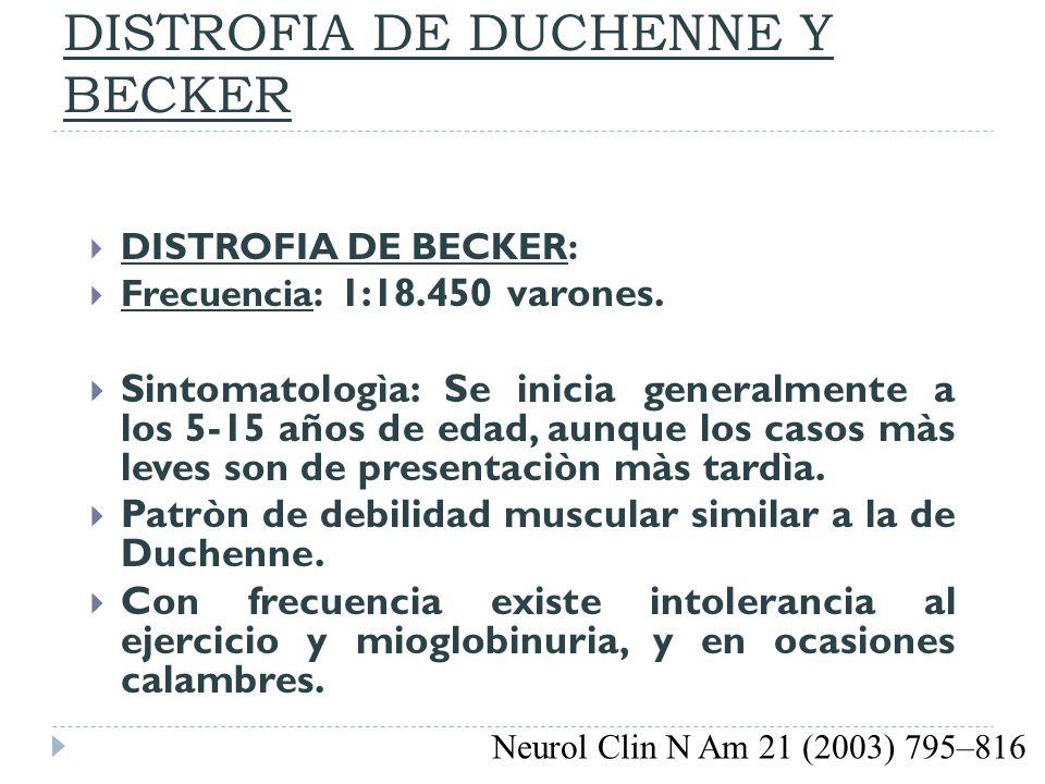 DISTROFIA DE DUCHENNE Y BECKER DISTROFIA DE BECKER: Frecuencia: 1:18.450 varones. Sintomatologìa: Se inicia generalmente a los 5-15 años de edad, aunq