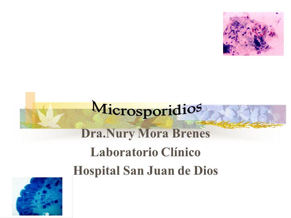 Muestras clínicas Heces Esputos Orinas Biopsias Aspirados