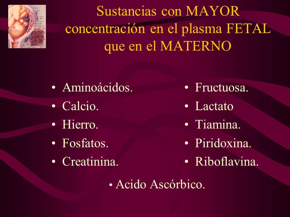 Sustancias con MAYOR concentración en el plasma FETAL que en el MATERNO Aminoácidos. Calcio. Hierro. Fosfatos. Creatinina. Fructuosa. Lactato Tiamina.