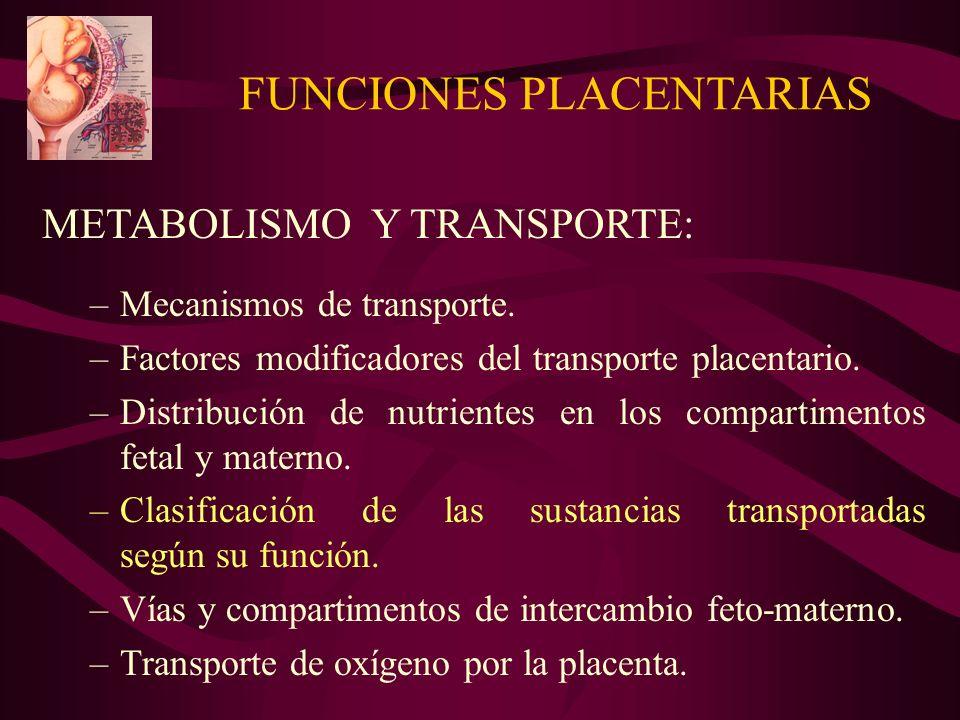 FUNCIONES PLACENTARIAS METABOLISMO Y TRANSPORTE: –Mecanismos de transporte. –Factores modificadores del transporte placentario. –Distribución de nutri
