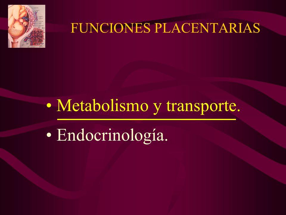 HORMONAS PLACENTARIAS SIMILARES A LAS HIPOFISIARIAS Gonadotrofina coriónica humana.