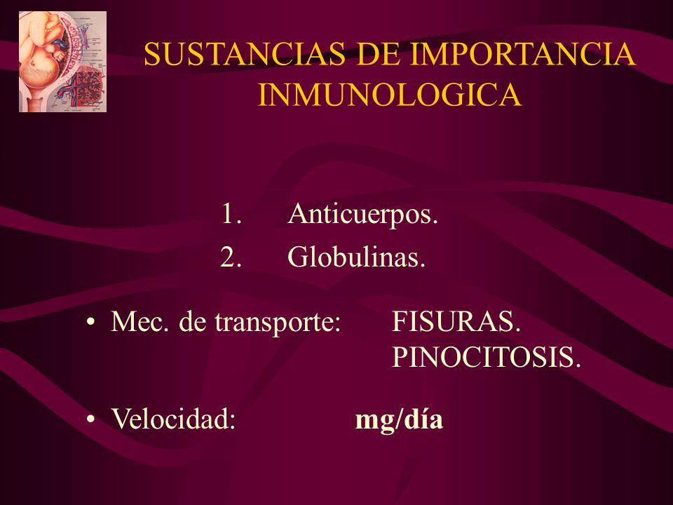 SUSTANCIAS DE IMPORTANCIA INMUNOLOGICA 1.Anticuerpos. 2.Globulinas. Mec. de transporte: FISURAS. PINOCITOSIS. Velocidad:mg/día
