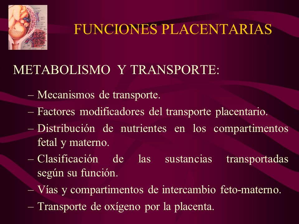 FUNCIONES PLACENTARIAS METABOLISMO Y TRANSPORTE: –Mecanismos de transporte.