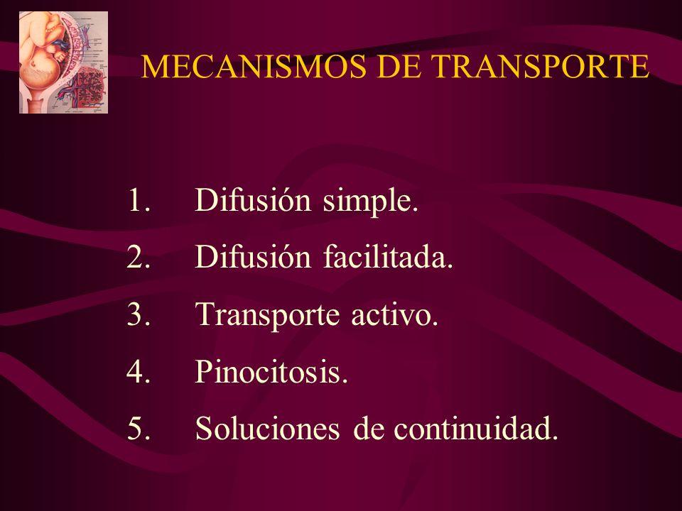 MECANISMOS DE TRANSPORTE 1.Difusión simple. 2.Difusión facilitada. 3. Transporte activo. 4.Pinocitosis. 5. Soluciones de continuidad.