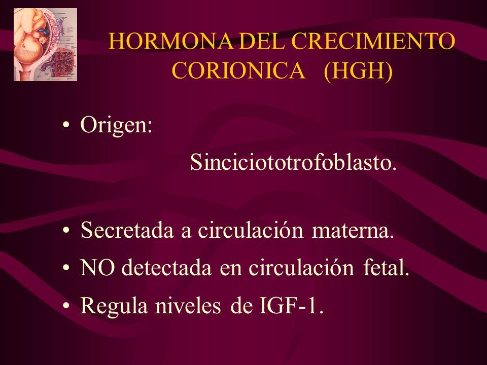 HORMONA DEL CRECIMIENTO CORIONICA (HGH) Origen: Sinciciototrofoblasto. Secretada a circulación materna. NO detectada en circulación fetal. Regula nive