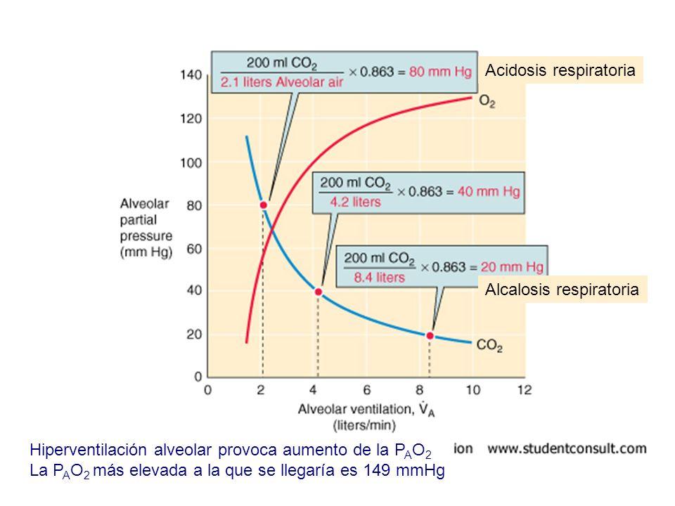 Alcalosis respiratoria Acidosis respiratoria Hiperventilación alveolar provoca aumento de la P A O 2 La P A O 2 más elevada a la que se llegaría es 14