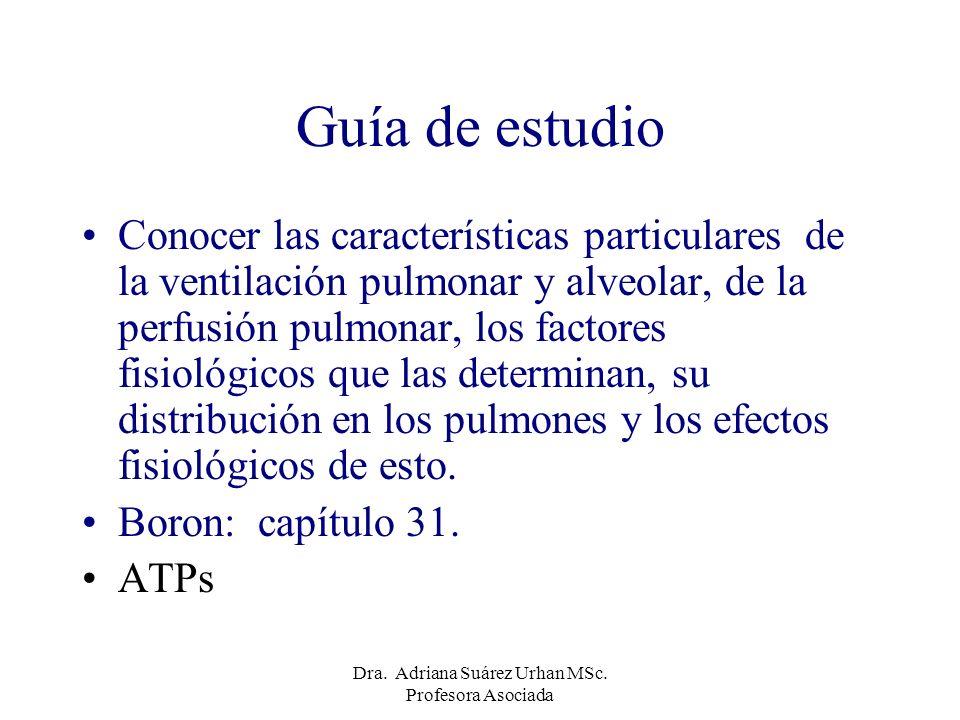 Distribución del flujo sanguíneo pulmonar La base de los pulmones se encuentra mejor perfundida que el apex Dra.