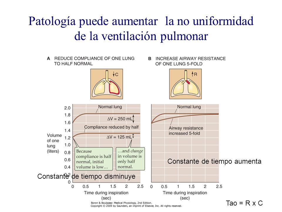 Patología puede aumentar la no uniformidad de la ventilación pulmonar Constante de tiempo aumenta Constante de tiempo disminuye Tao = R x C